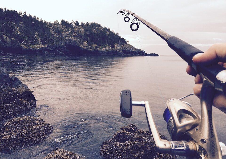 Volver a pescar ¿Dónde guardo mi equipamiento de pesca?